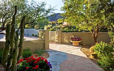 41851 N 112th Place, Desert Mountain